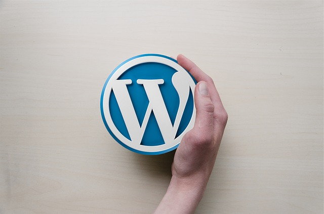 As diferenças entre WordPress.org e WordPress.com
